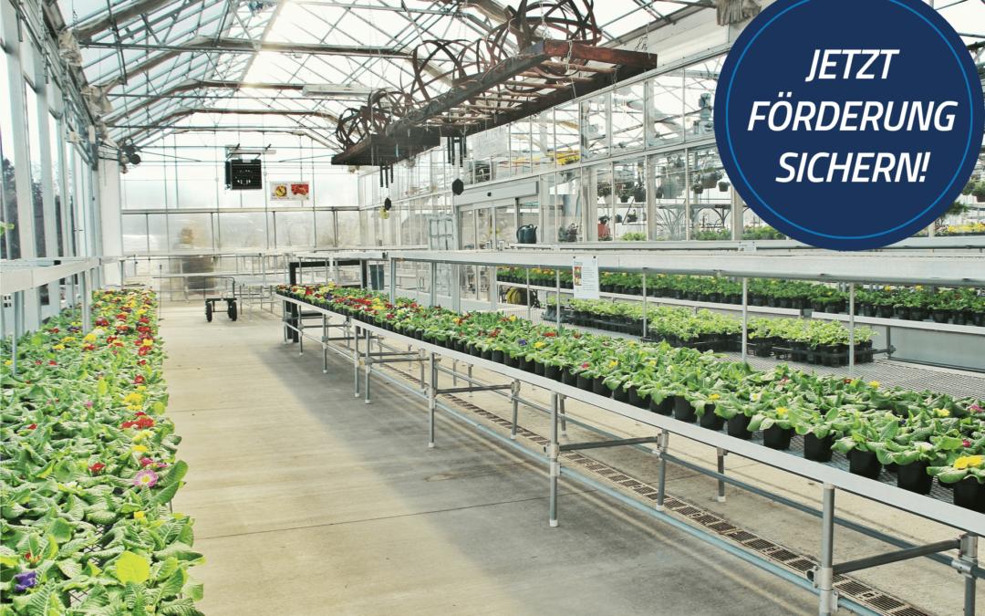 Energieeffizienz in der Landwirtschaft: Förderungen