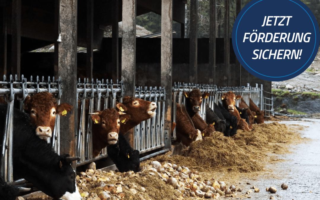 Förderung für die Digitalisierung der Landwirtschaft in Bayern