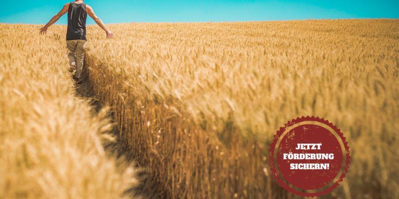 BLE: Staatliche Zuschüsse für Landwirte