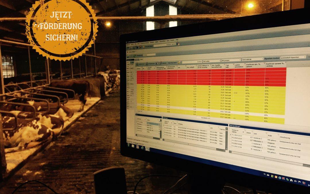 Automatisierung in der Milchviehhaltung