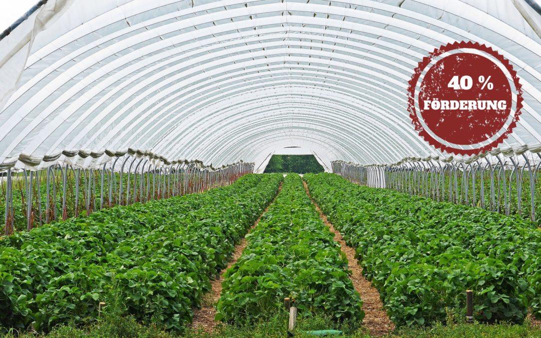 Landwirtschaft bayern