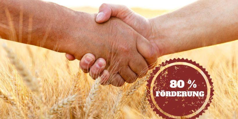 Bis zu 80% Förderung für landwirtschaftliche Energieeffizienz